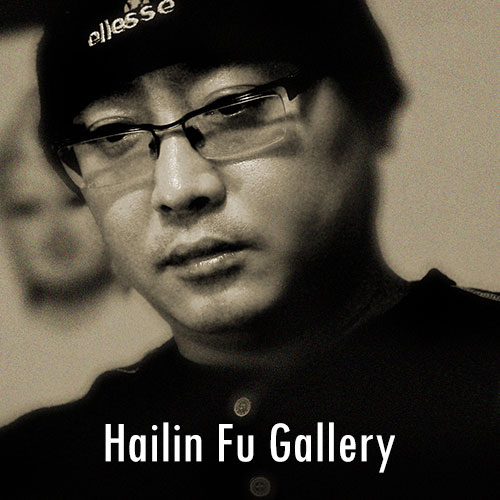 Hailin Fu Gallery